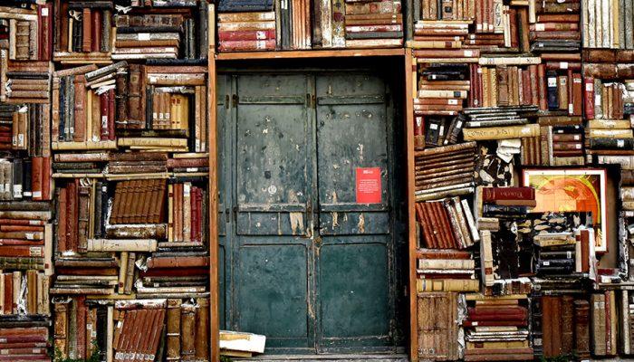 Referencias bibliograficas en la oposición (II)